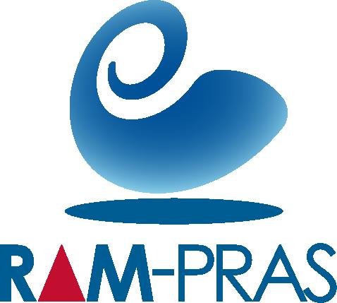 RAM-PRAS - our civilian solution